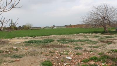 Finca - For rent - Dolores - Alicante