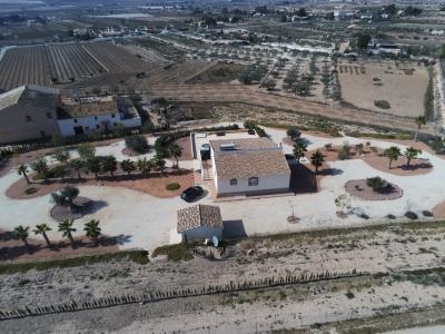 Villa - For sale - Aspe - Alicante